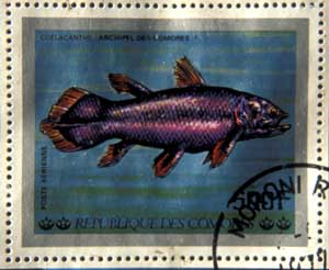 Comores Coelacanth fish stamp