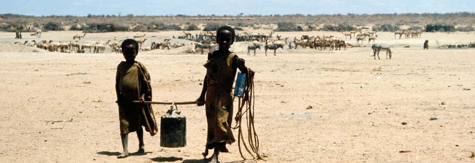 ETHIOPIA fetching water, refugee camp Ogaden drought ETH11218