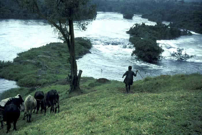 Source of the White Nile near Jinja, Uganda